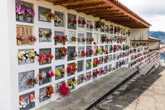 Salamina Caldas Колумбия стоковое фото rf