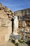 Salamiruïnes, Cyprus royalty-vrije stock afbeelding