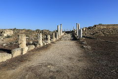 Salamis (Ancient Greek: Σαλαμίς) is an ancient Greek city-state on the east coast of Cyprus Stock Photography