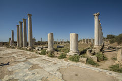 Salamis ancient Roman site in Cyprus Stock Images