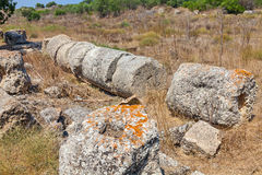 Salamis Ruins Royalty Free Stock Photography
