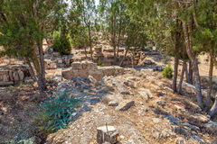 Salamis Ruins Royalty Free Stock Images