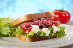 Salamisandwich lizenzfreie stockfotos