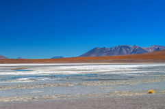 Salar Royalty Free Stock Photography