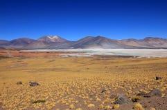 Salar Aguas Calientes, Atacama pustynia, Chile Fotografia Royalty Free