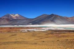 Salar Aguas Calientes, Atacama pustynia, Chile Zdjęcie Stock