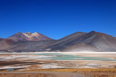 Salar Aguas Calientes, Atacama pustynia, Chile Obrazy Stock