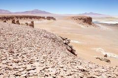 Salar das Tara, Chile Stockbilder