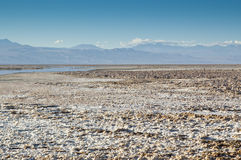 Salar de Atacama Royalty Free Stock Images
