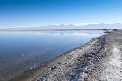 Salar de Atacama Stock Photography