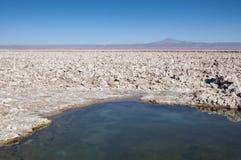 Salar de Atacama Photos libres de droits