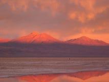 Salar De Atacama Obrazy Stock