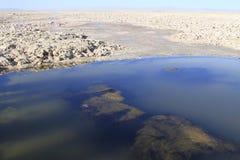Salar de Atacama Fotos de Stock Royalty Free