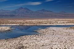 Salar de Atacama, Chile Royalty Free Stock Photo