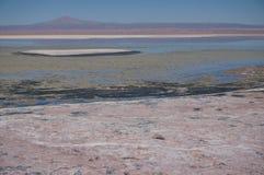 Salar de Atacama, Chile Stockbilder