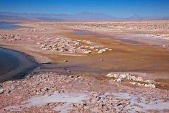 Salar de Atacama, Chili Image stock