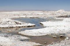 Salar de Atacama, Chili Photo libre de droits
