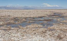 Salar de Atacama, il più grande sale piano nel deserto dell'Atacama, Cile del Cile Immagine Stock Libera da Diritti