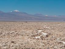 Salar de Atacama Laguna Chaxa Stockbild