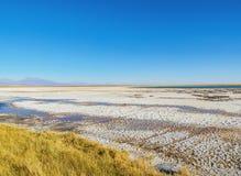 Salar De Atacama w Chile Obrazy Stock