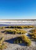 Salar De Atacama w Chile Fotografia Stock