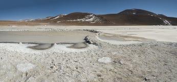 Salar de Chalviri, anche conosciuto come Salar de Ohalviri, è un sale piano nel cuore della riserva di Eduardo Avaroa Andean Faun Fotografia Stock Libera da Diritti