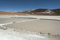Salar de Chalviri, anche conosciuto come Salar de Ohalviri, è un sale piano nel cuore della riserva di Eduardo Avaroa Andean Faun Fotografie Stock Libere da Diritti