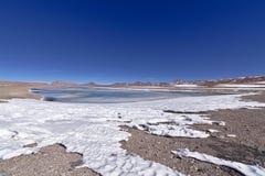 Salar de Pujsa. With snow and salt water lake Stock Image