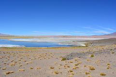 Salar de Tara lake at Atacama Desert, Bolivia. Beautiful landscape of the Salar de Tara desert Stock Images
