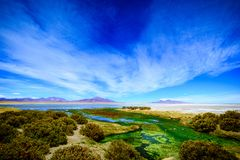 Salar de Tara, San Pedro Atacama, o Chile fotografia de stock royalty free