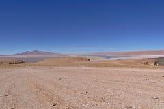Salar de Tara. Seen from a higher distant viewpoint Stock Image