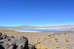 Salar de Tara sjö på den Atacama öknen, Bolivia Royaltyfria Foton