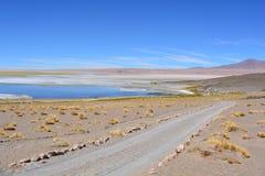 Salar de Tara sjö på den Atacama öknen, Bolivia Arkivbilder