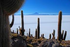 Salar de Uyuni Fotografia Stock Libera da Diritti