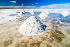 Salar de Uyuni. Little mountains of salt in Salar de Uyuni in Bolivia Stock Photography