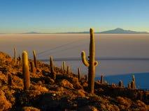 Salar de Uyuni Immagini Stock