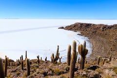 Salar de Uyuni-Ansicht von Isla Incahuasi stockbilder