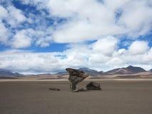 Salar de Uyuni Bolivia Royaltyfria Foton