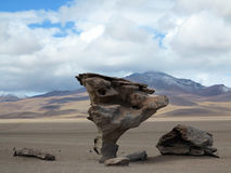Salar de Uyuni Bolivia Arkivfoto