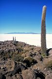 Salar de Uyuni in Bolivia,Bolivia. Island Pescado in Salar de Uyuni at Eduardo Avaroa National Reserve,Bolivia Stock Photo