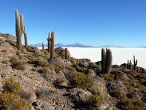 Salar de Uyuni in Bolivia royalty free stock image