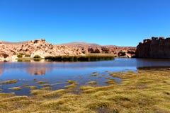 Salar de Uyuni desert black laguna Stock Image