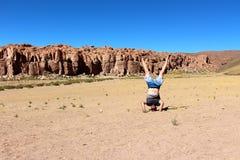 Salar de Uyuni desert Stock Images