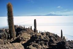 Salar de Uyuni em Bolívia, Bolívia fotografia de stock