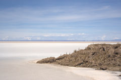 Salar de Uyuni - Isla del Pescado immagini stock libere da diritti