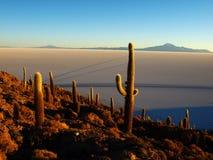 Salar de Uyuni. The largest salt plain in the world Royalty Free Stock Photos