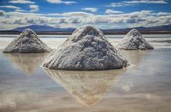 Salar de Uyuni, Uyuni-Salz-Ebenen, Altiplano, Bolivien Stockfoto
