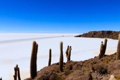 Salar de Uyuni view from Isla Incahuasi Stock Photos