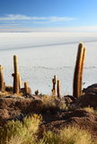 Salar de Uyuni view from Isla Incahuasi. Potosí Department. Bolivia. Isla Incahuasi is a hilly and rocky outcrop of land and former island in Bolivia situated Stock Photo
