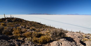 Salar de Uyuni view from Isla Incahuasi. Potosí Department. Bolivia. Isla Incahuasi is a hilly and rocky outcrop of land and former island in Bolivia situated Royalty Free Stock Images